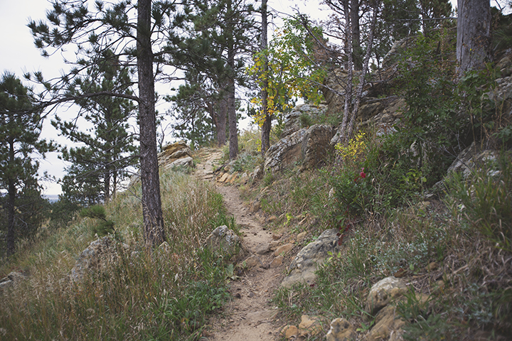 Skyline Wilderness Hiking Trail Black Hills Things To Do